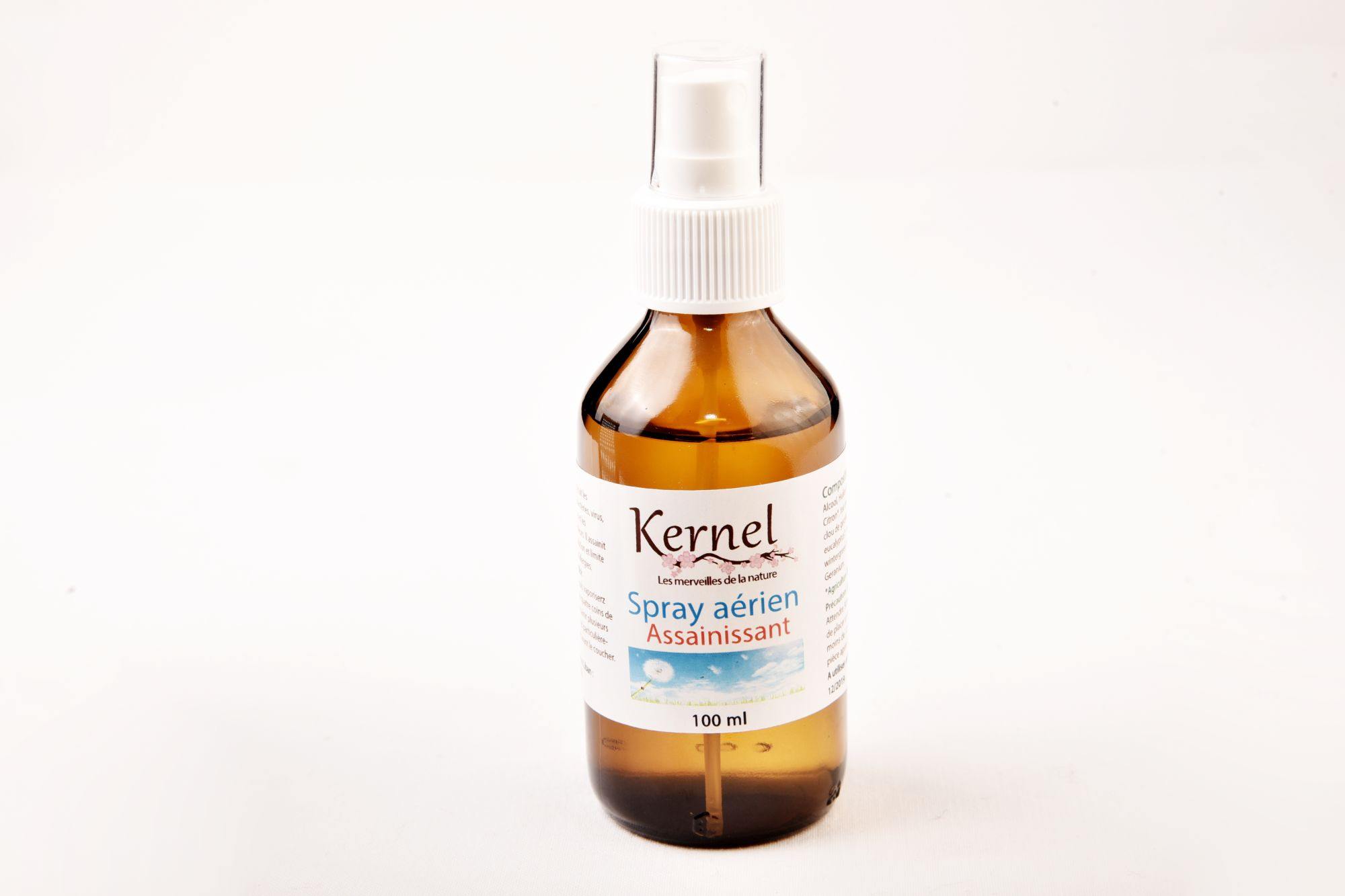 Kernel Organic Spray Assainissant 100 ml (Purifying Air Spray)